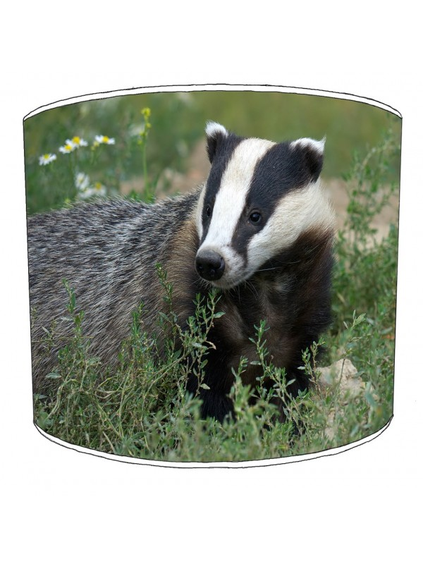 badgers lampshade 19