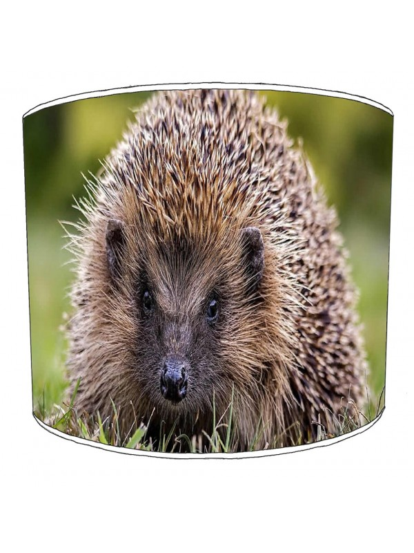 hedgehog lampshade 2