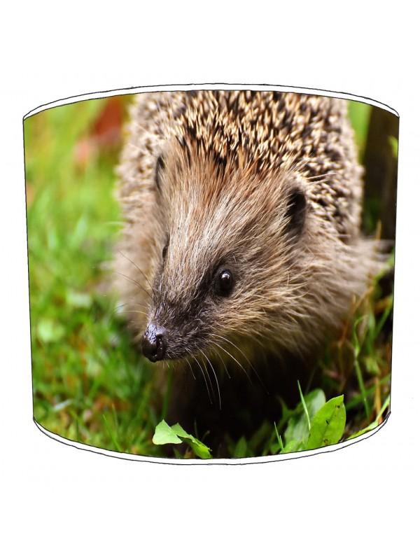hedgehog lampshade 4