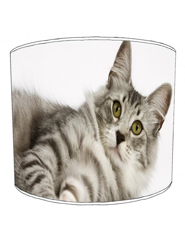 cat lampshade 12