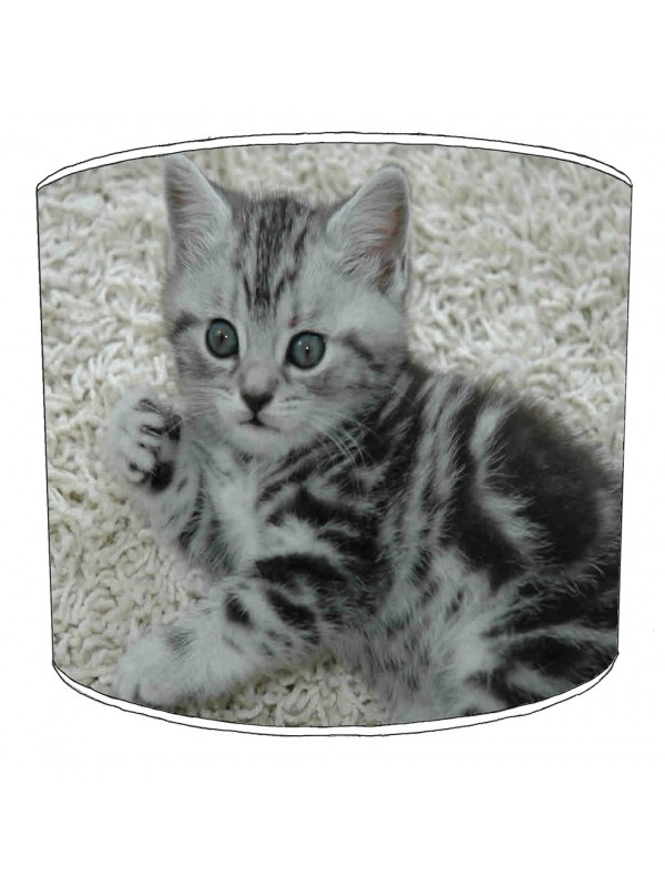 cat lampshade 19