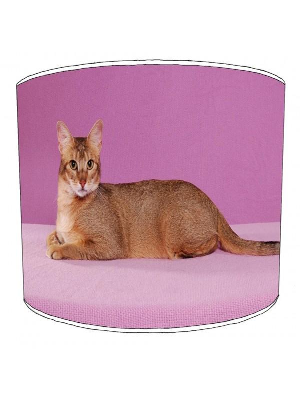 cat lampshade 2