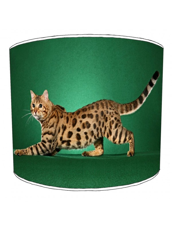 cat lampshade 3