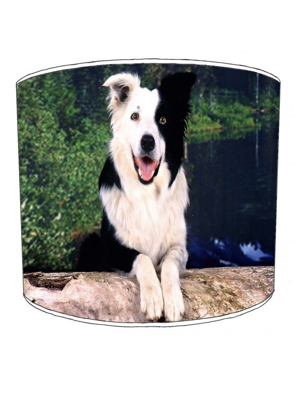 border collie print lampshade 5