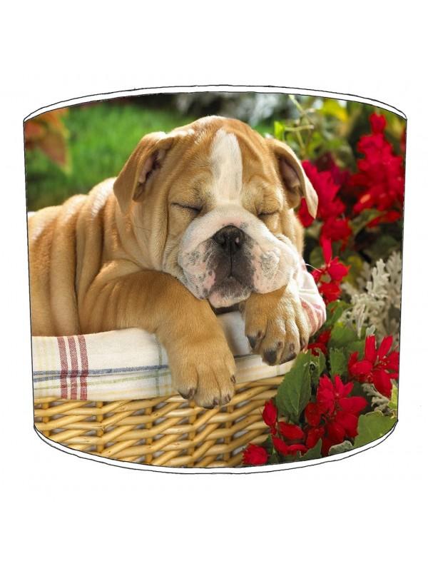bulldog lampshade 6