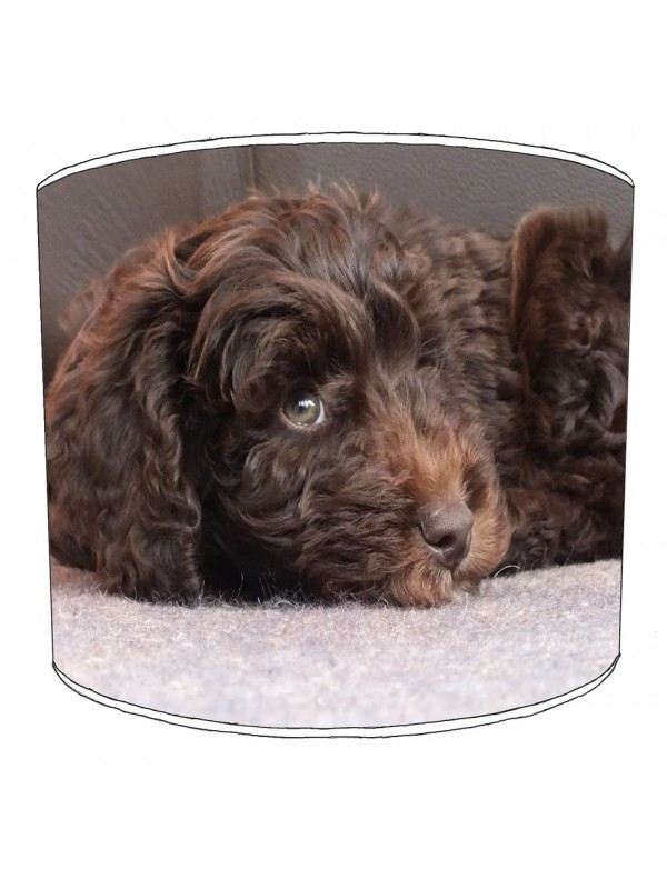 cockapoo lampshade 16