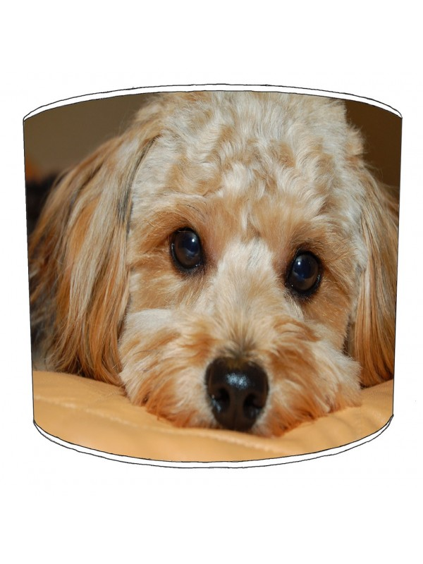 cockapoo lampshade 2