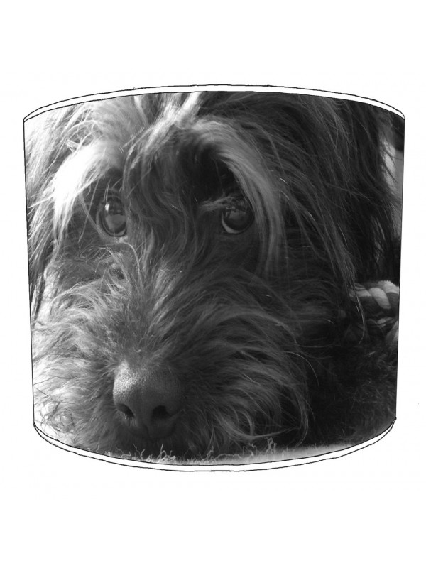 cockapoo lampshade 6