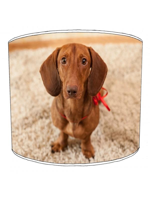 dachshund lampshade 1