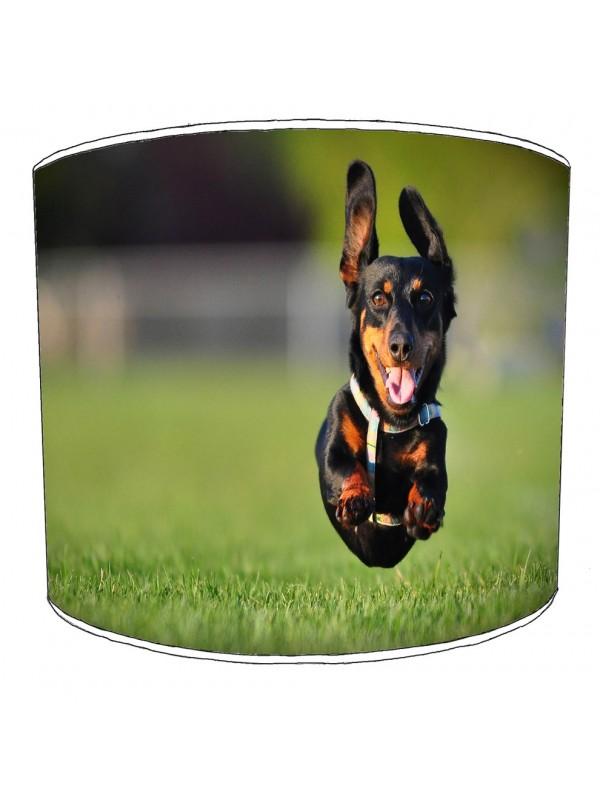 dachshund lampshade 2