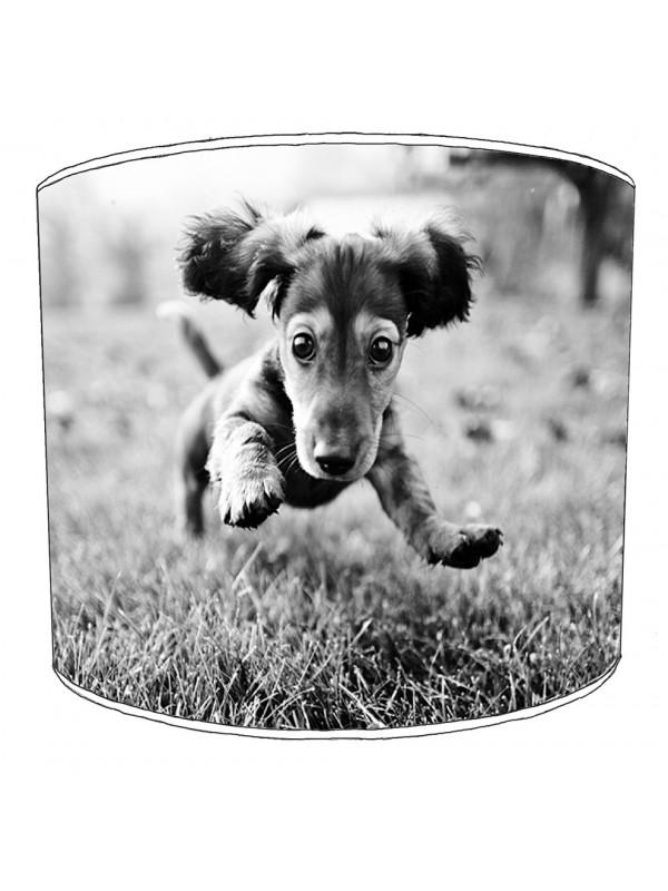 dachshund lampshade 4