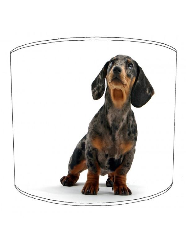 dachshund lampshade 5