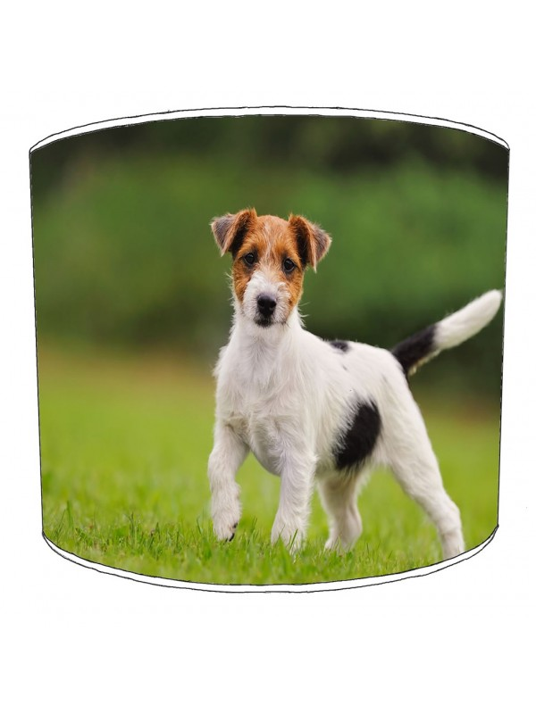 jack russell lampshade 2