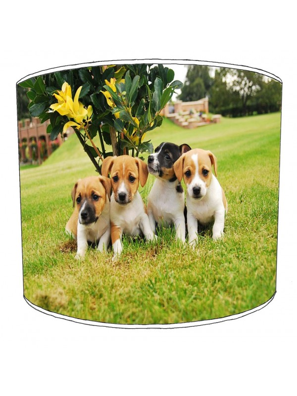 jack russell lampshade 7