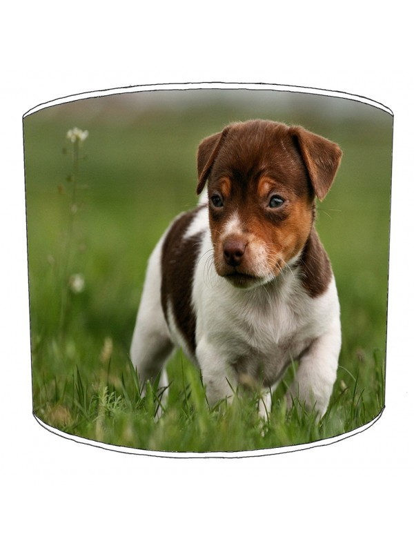 jack russell lampshade 9