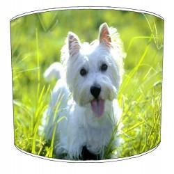 Westland Highland Terrier