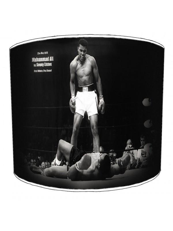 boxing lampshade 6