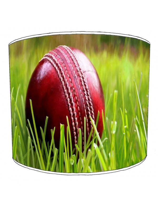 cricket lampshade 1