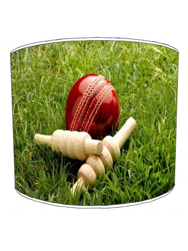 cricket lampshade 2