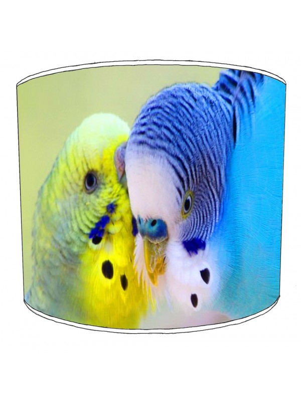 budgies lampshade 1