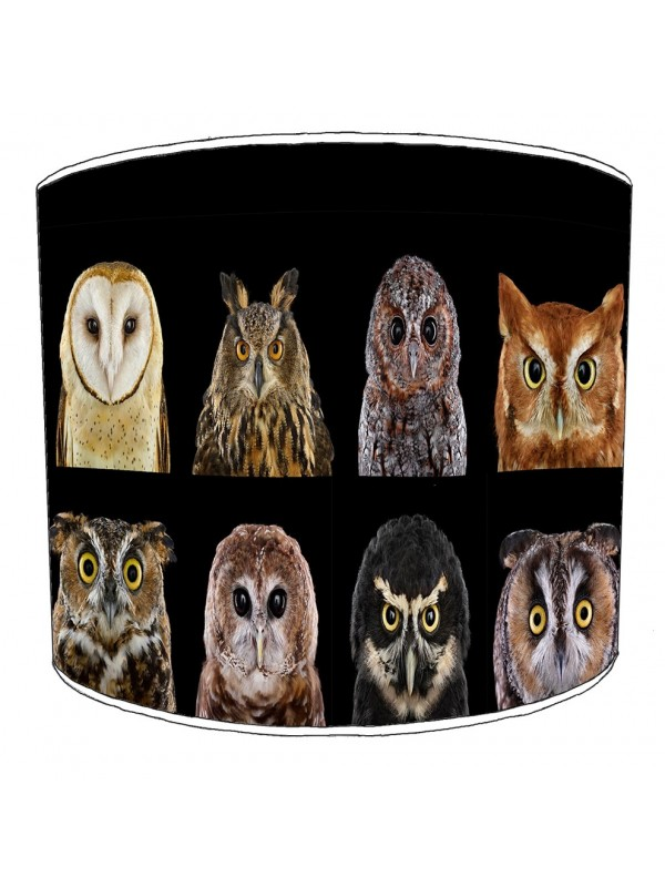 owls lampshade 18