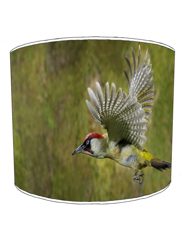woody woodpecker lampshade 11