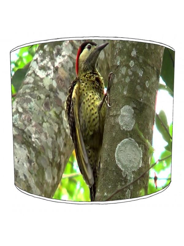 woody woodpecker lampshade 9