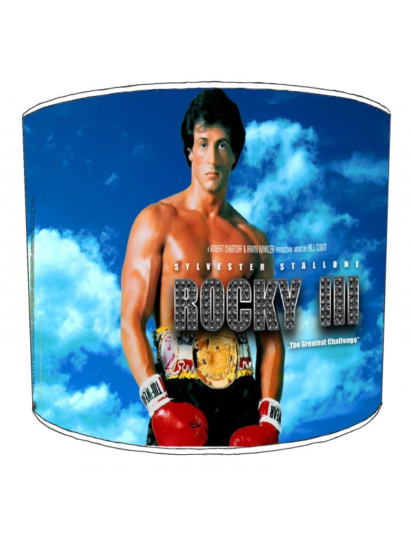 rocky lampshade 4