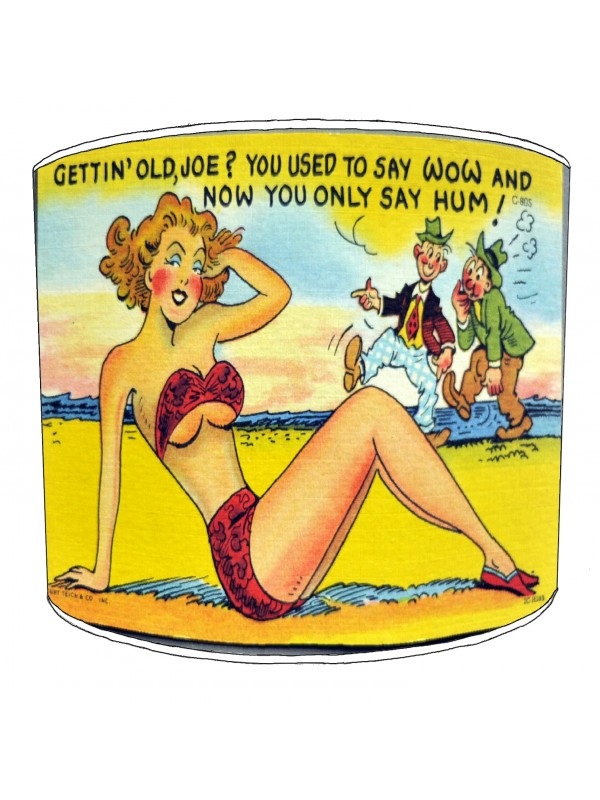 vintage raunchy postcards lampshade 14