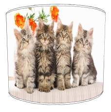 Cats and Kittens Childrens Lampshades