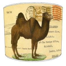 Cavallini Style Lampshades